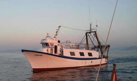 fishingtripmajorca.co.uk boat tours in Majorca with Domingo